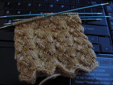Lettuce sock inprogress
