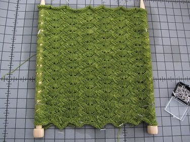 Lettuce endive cowl blocking