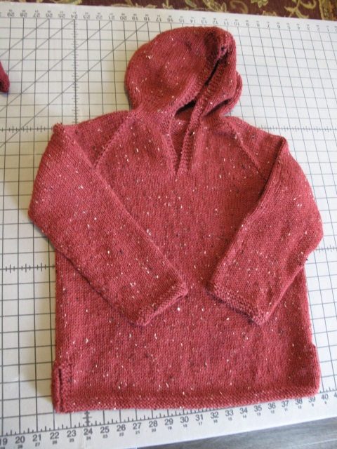 Hoodie for xander missing button