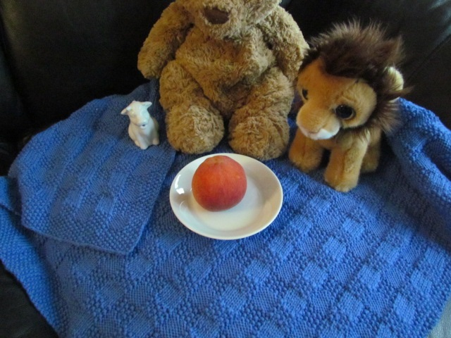 Teddy Bear Picnic with props 02
